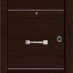 Πόρτες ασφαλείας Laminate Inox (5)