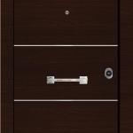 Πόρτες ασφαλείας Laminate Inox (6)